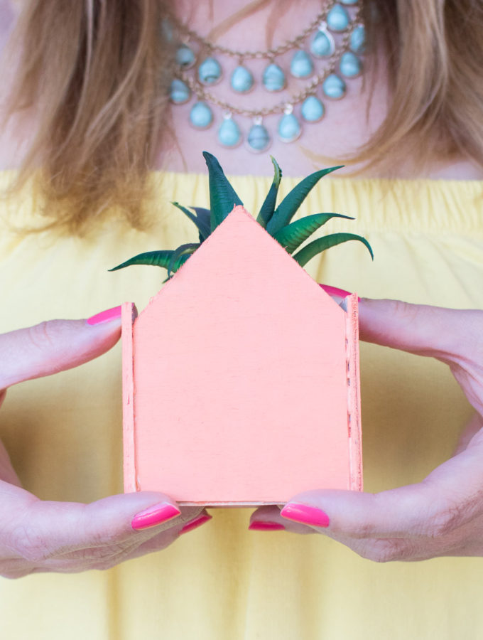 DIY Mini Pastel House Planters   Club Crafted