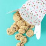 Itty Bitty Mini Chocolate Chip Cookies
