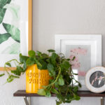DIY 3D Graphic Planter (Anthropologie Knock-Off)