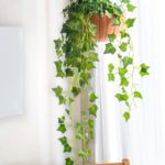 DIY Hanging Pumpkin Planter for Fall Decor
