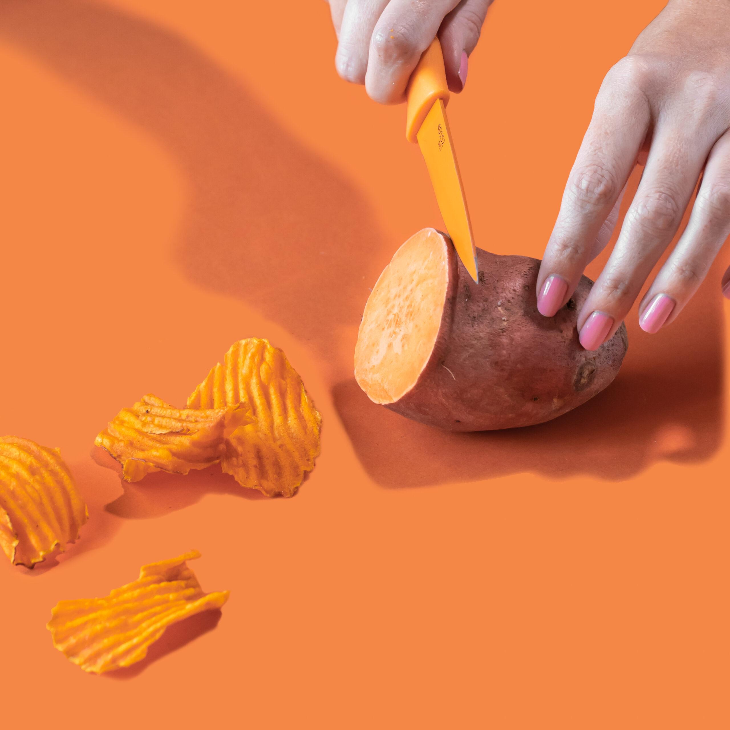 terra-chips-v2-2