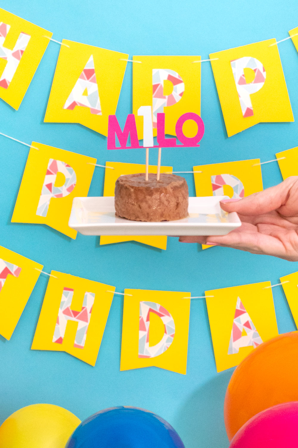 DIY cake topper on cat food for pet birthday